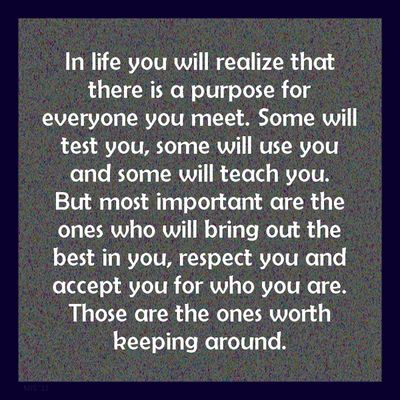In Life You Will Realize That There Is A Purpose For Everyone You Meet.  Some Will Test You, Some Will Use You And Some Will Teach You.
