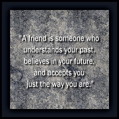 """A friend is someone who understands your past, believes in your future, and accepts you just the way you are."""